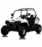 Bull Buggy Savage 150c Automatic - Buggy